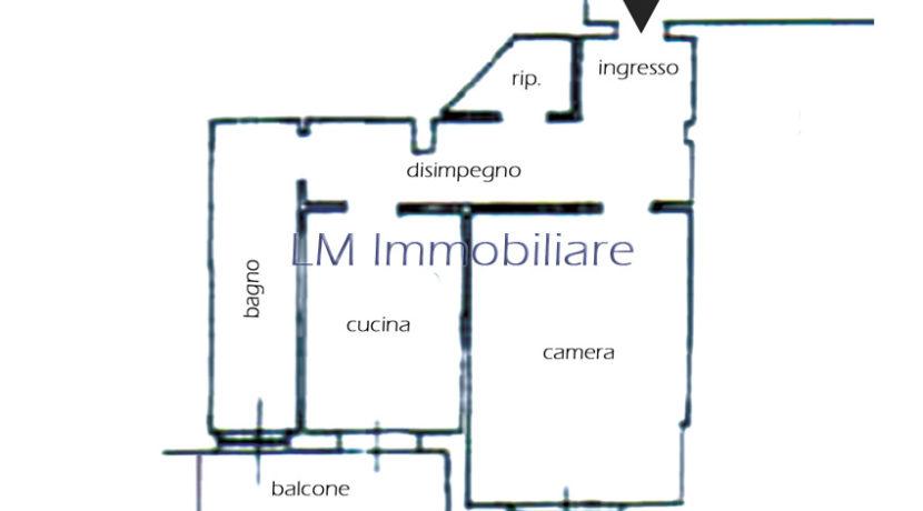 11 Planimetria