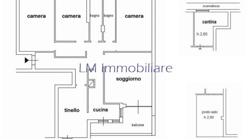 17-planimetria